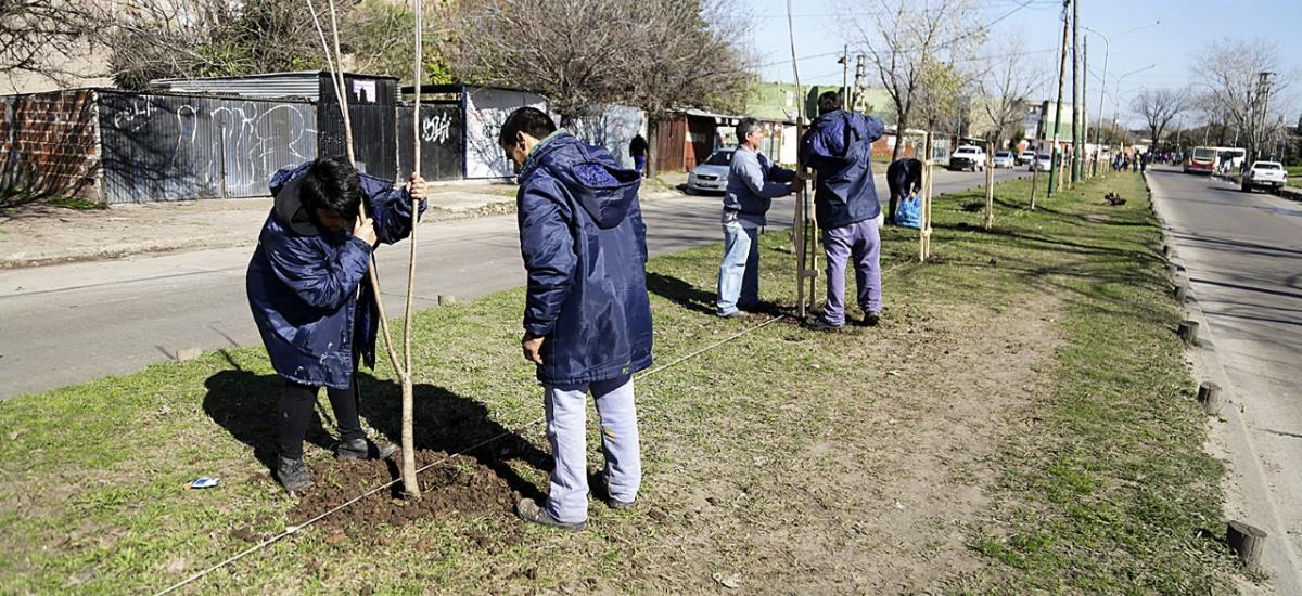El municipio plantará miles de árboles en todo Almirante Brown