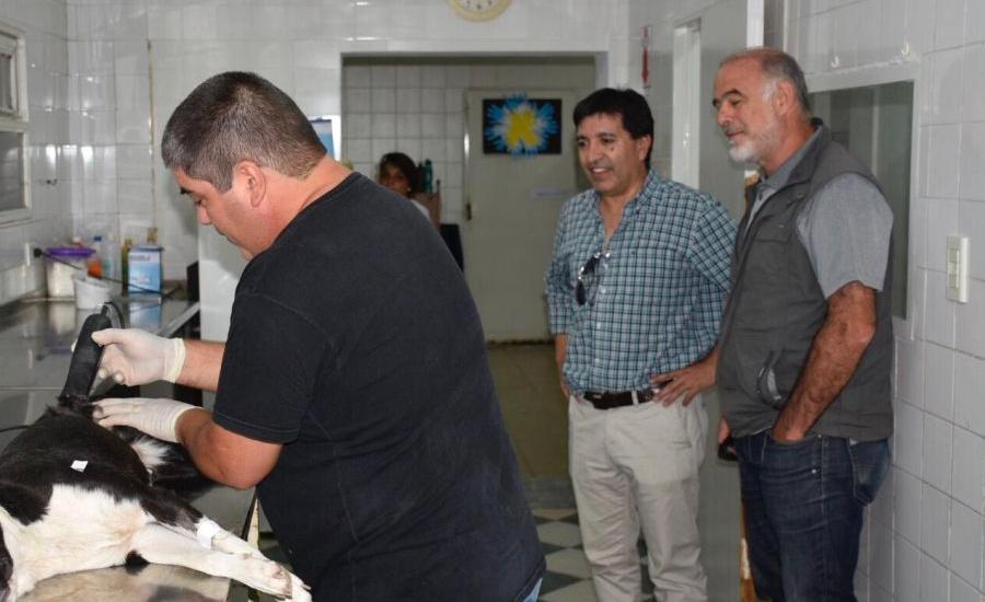 Municipios visitan zoonosis Brown tomándolo como modelo de sanidad animal en la provincia
