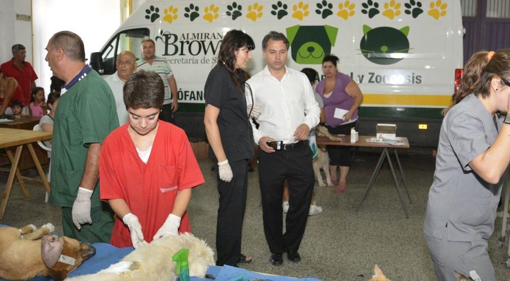Operativo  de castración de mascotas en Ministro Rivadavia