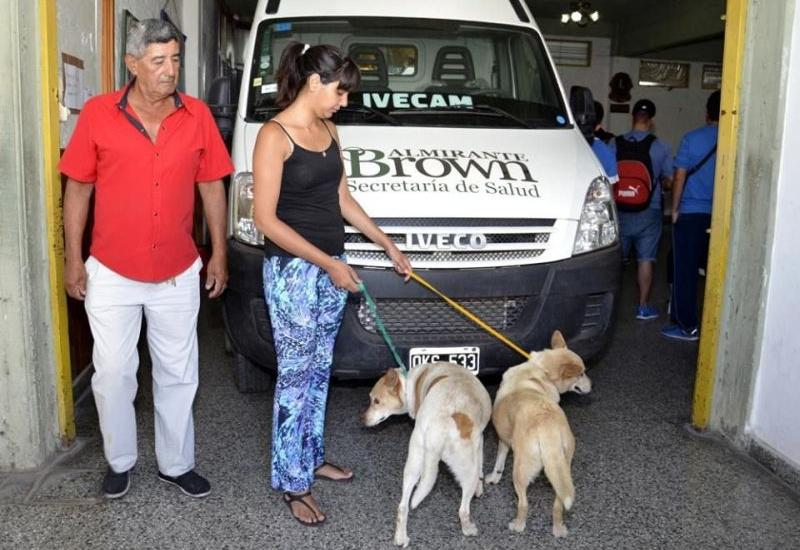 Operativos de castración de mascotas en San José